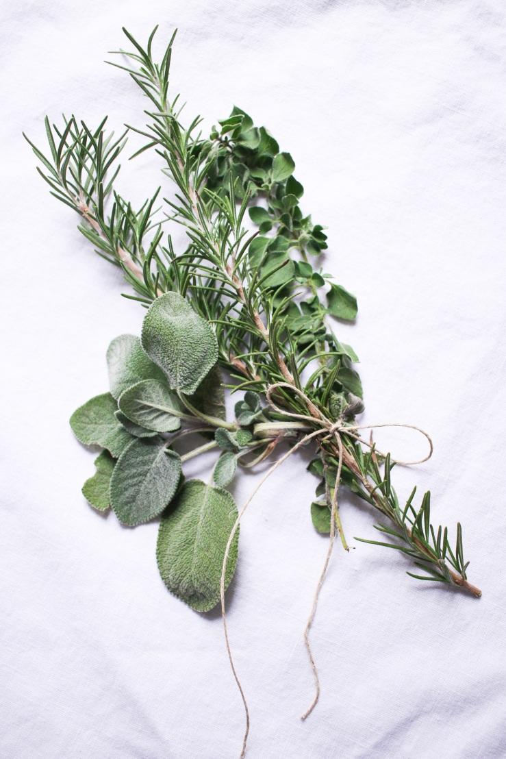 Herb-2.jpg.jpeg